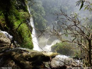 trekking-umphang-wildlife-sanctuary-thi-lor-su (11)