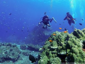 learn-to-dive-at-the-similan-islands-36