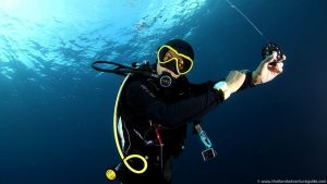 learn-to-dive-at-the-similan-islands (42)